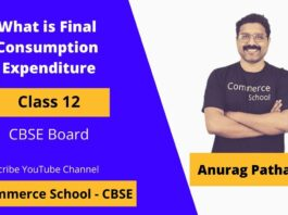 what is final consumption expenditure in macroeconomics class 12 CBSE Board
