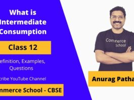 what is intermediate consumption in national income chapter class 12 CBSE Board