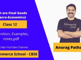 what are final goods in macroeconomics class 12 CBSE board